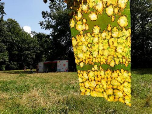 august flowers III agnieszka kazała batik a